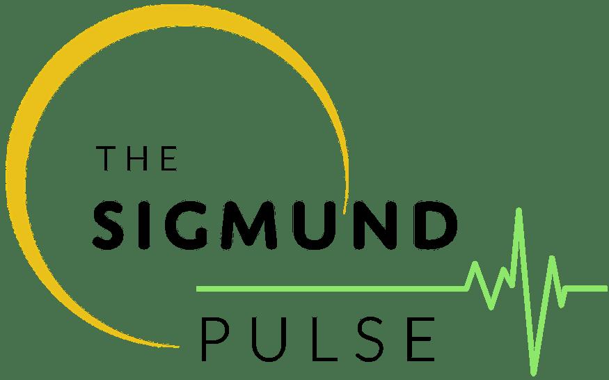Sigmund Pulse Logo Black Text-1